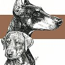 Doberman (cropped), Father & Son by BarbBarcikKeith