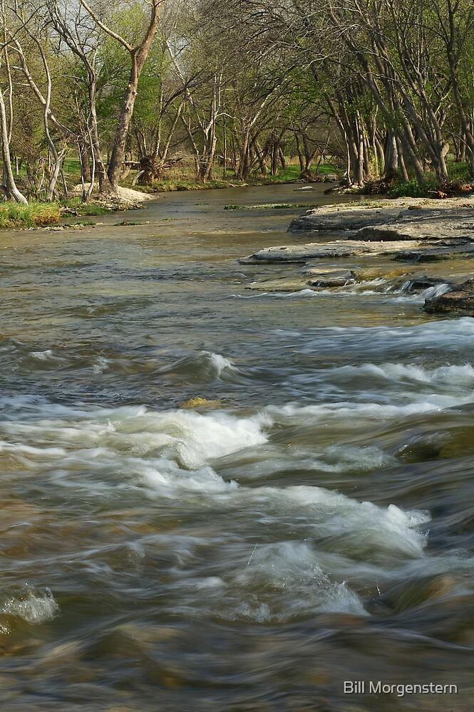 Salado River by Bill Morgenstern