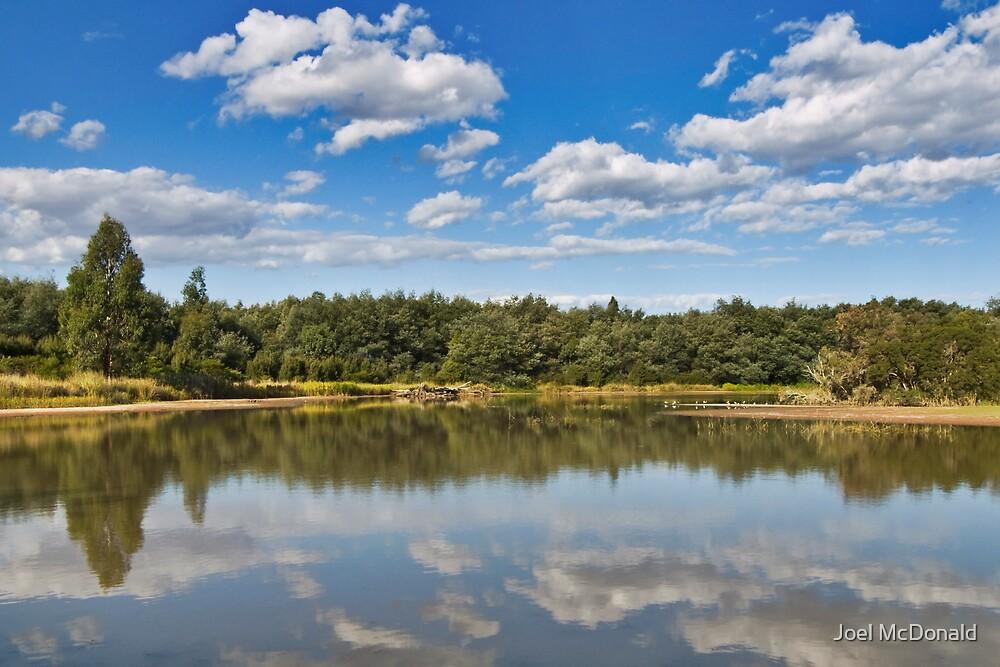 Blue Reflection by Joel McDonald