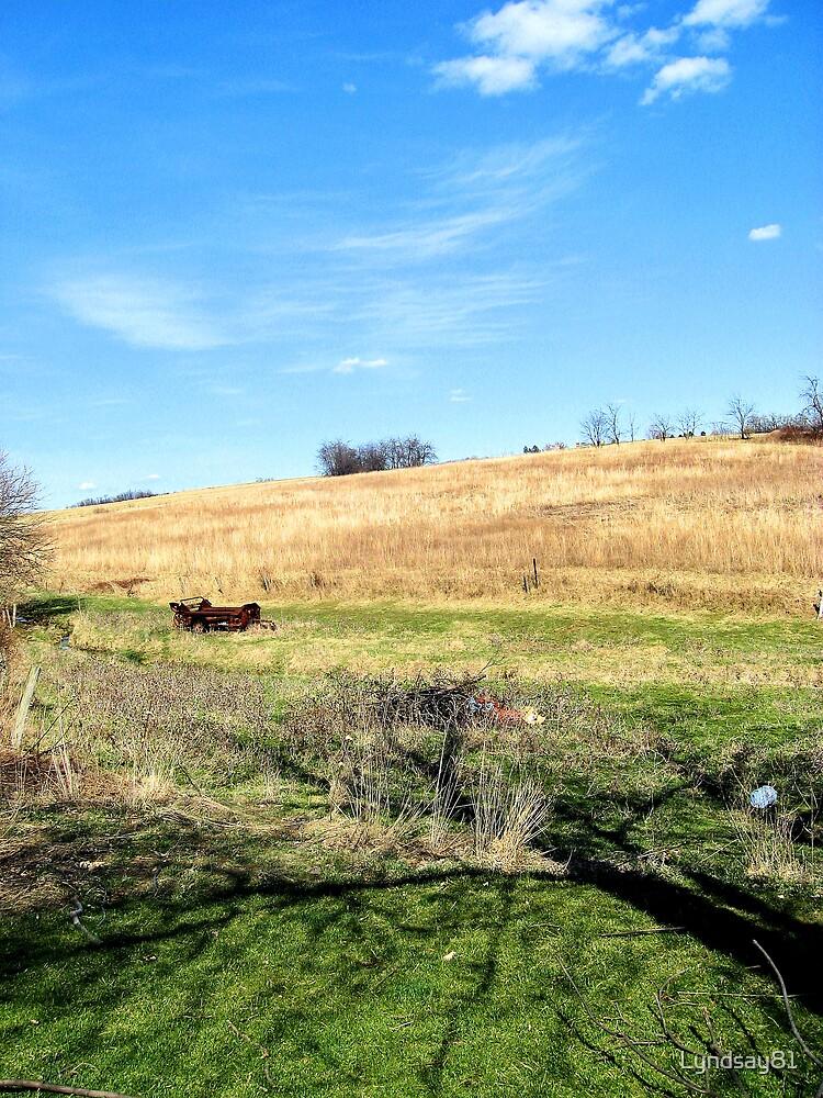 Home on the Farm by Lyndsay81