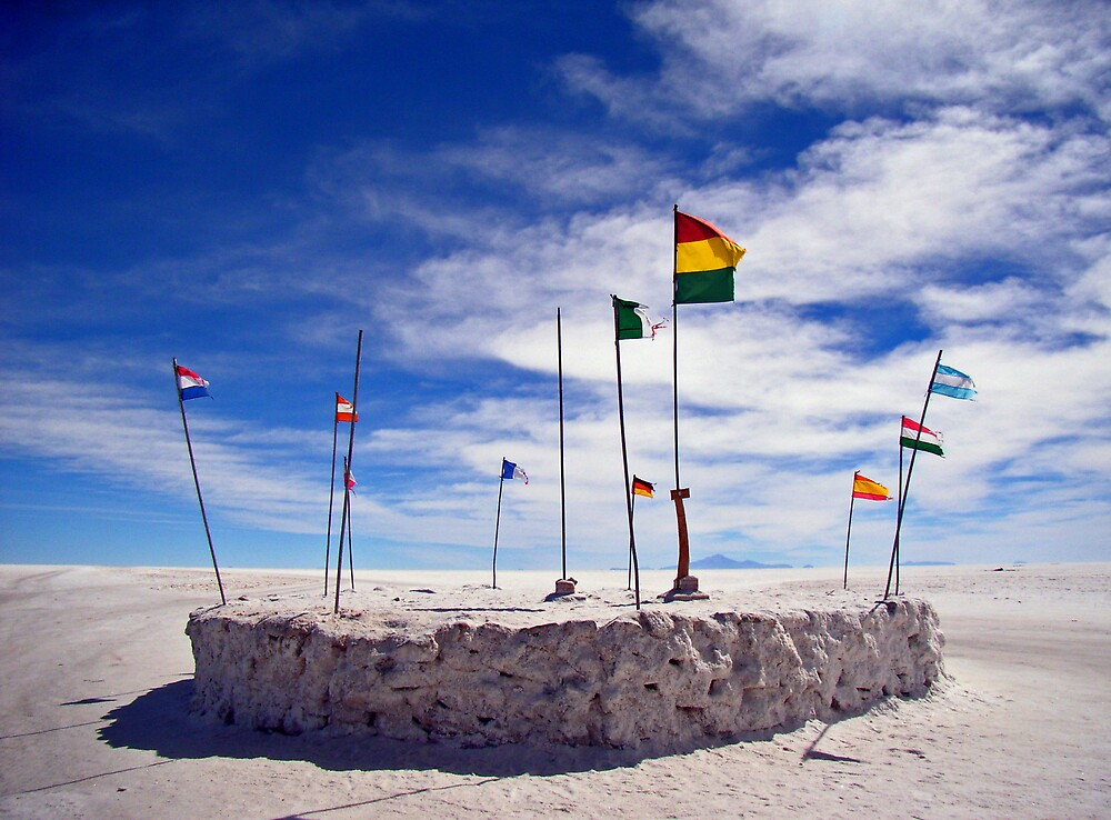Flags over the salar by Elaine Stevenson