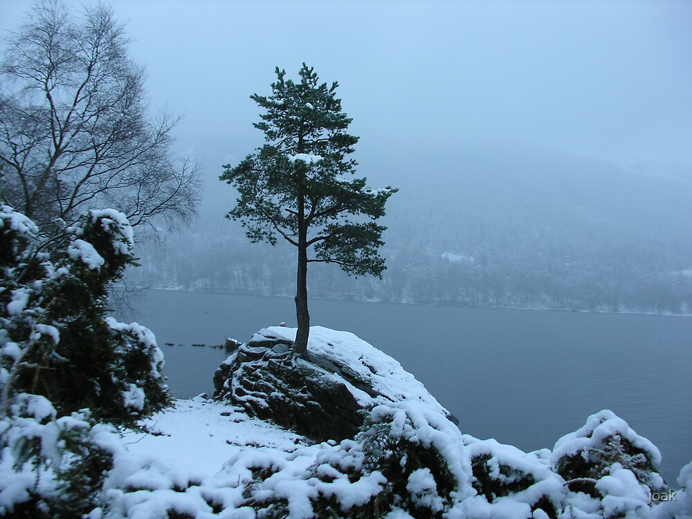 the lonesome pine  by joak