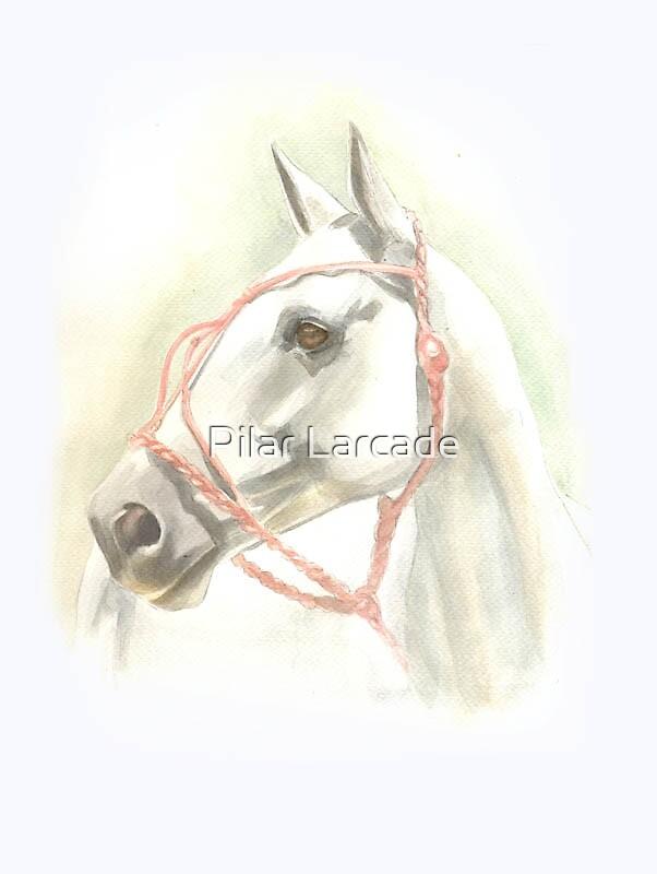 Polo pony by Pilar Larcade