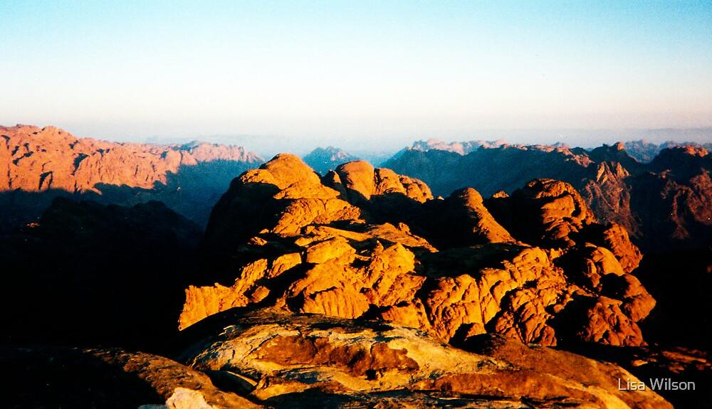 Sunrise, Mt Sinai by Lisa Wilson