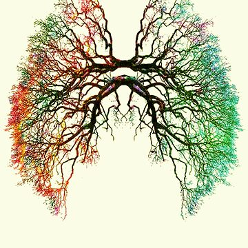 The Root of Lungs by Snaflein
