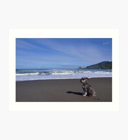 Fritzel at the beach Art Print