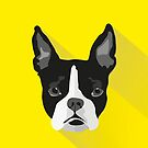 Boston Terrier by Ludwig Wagner