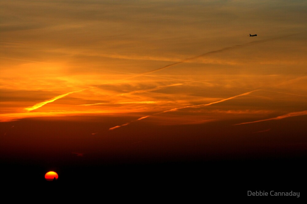Early Morning Flight by Debbie Cannaday