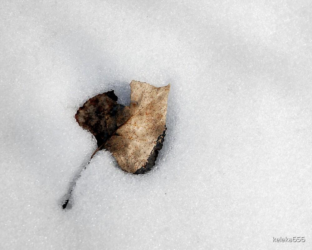 Dead Of Winter by keleka656