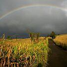 Somewhere Under the Rainbow by Randy Richards
