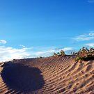 Sand Dune by Kylie Reid