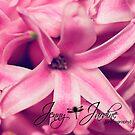 Pink Flower by aljen01