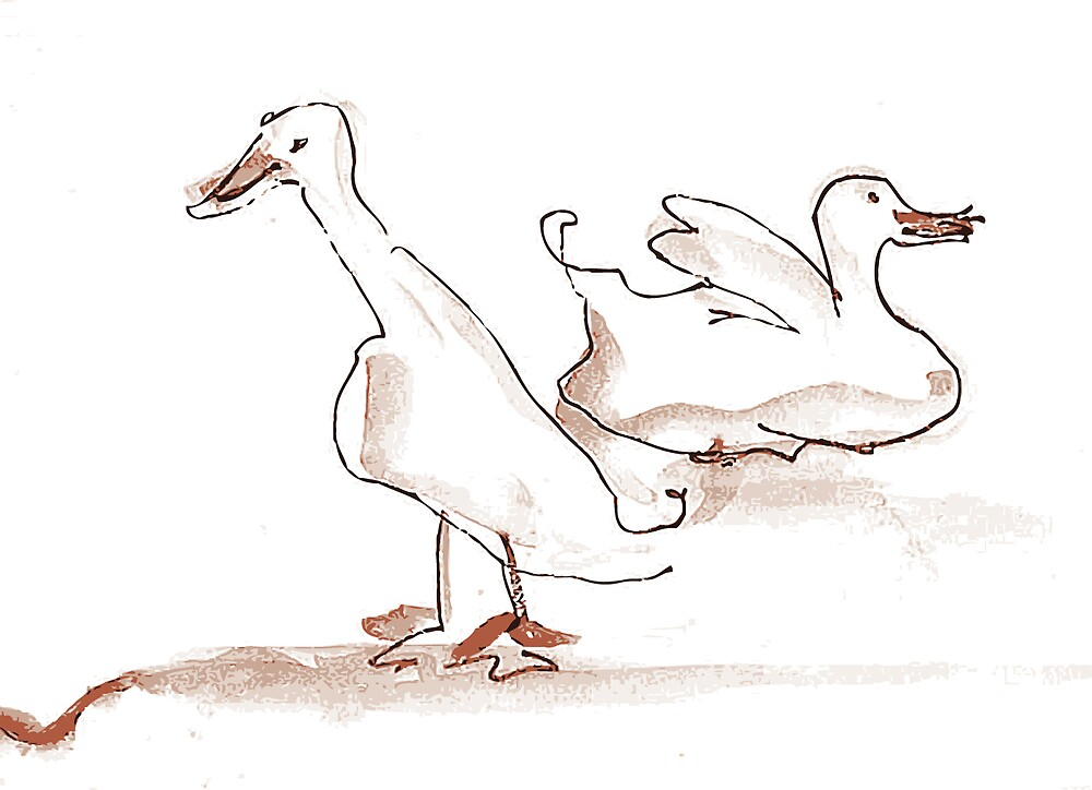 Two ducks by Patsy Bush