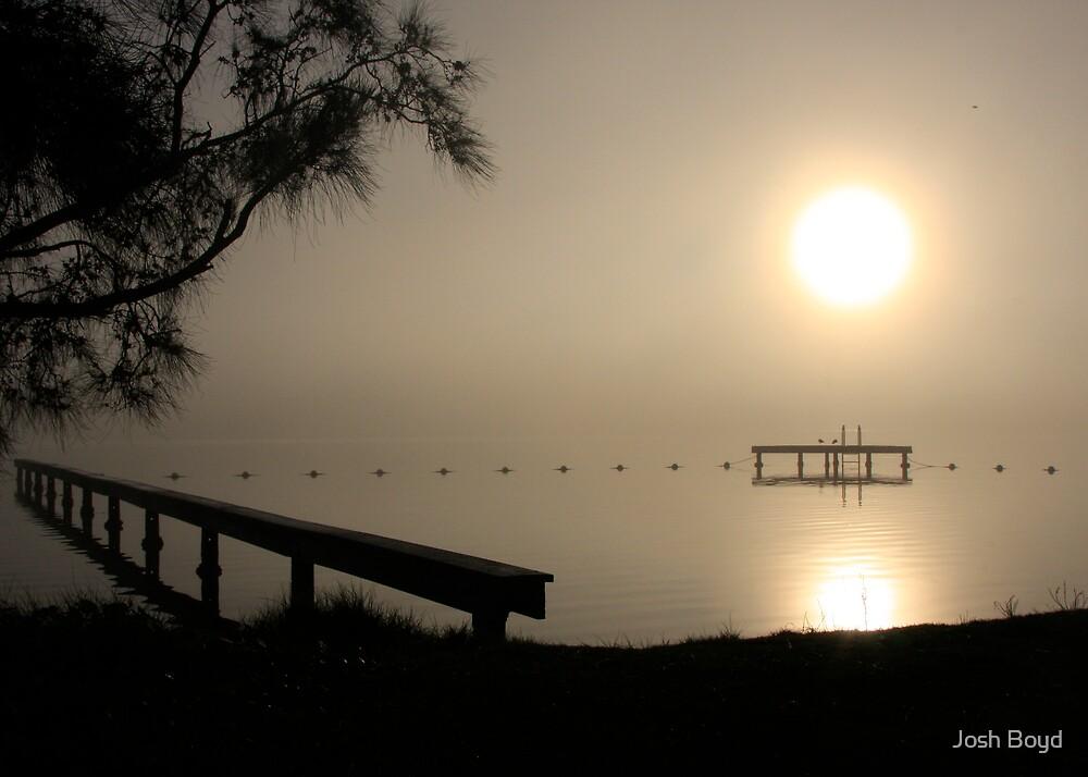 Misty Morning, Rathmines Lake Macquaire by Josh Boyd