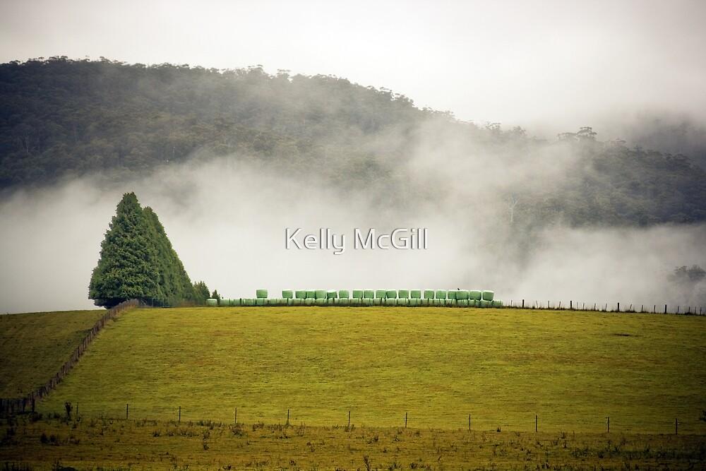 Hay Bales by Kelly McGill