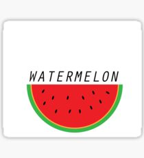 Pastèque été watermelon summer Sticker