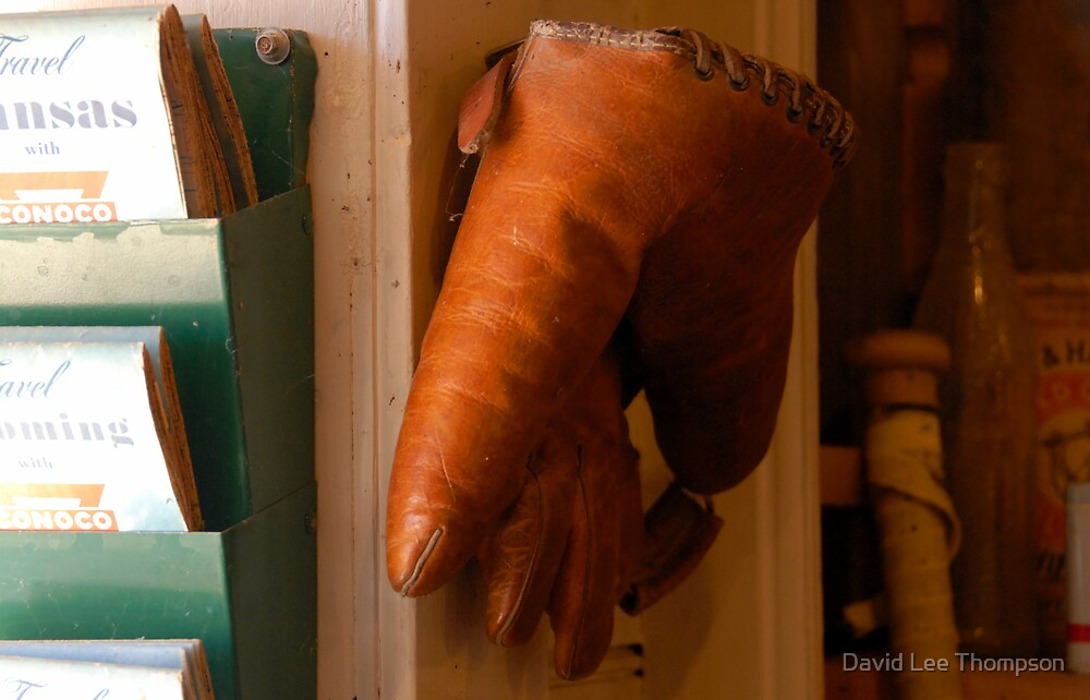 """""""The Glove"""" by David Lee Thompson"""
