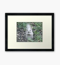 They Call Me Silver Framed Print