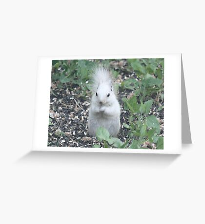 They Call Me Silver Greeting Card