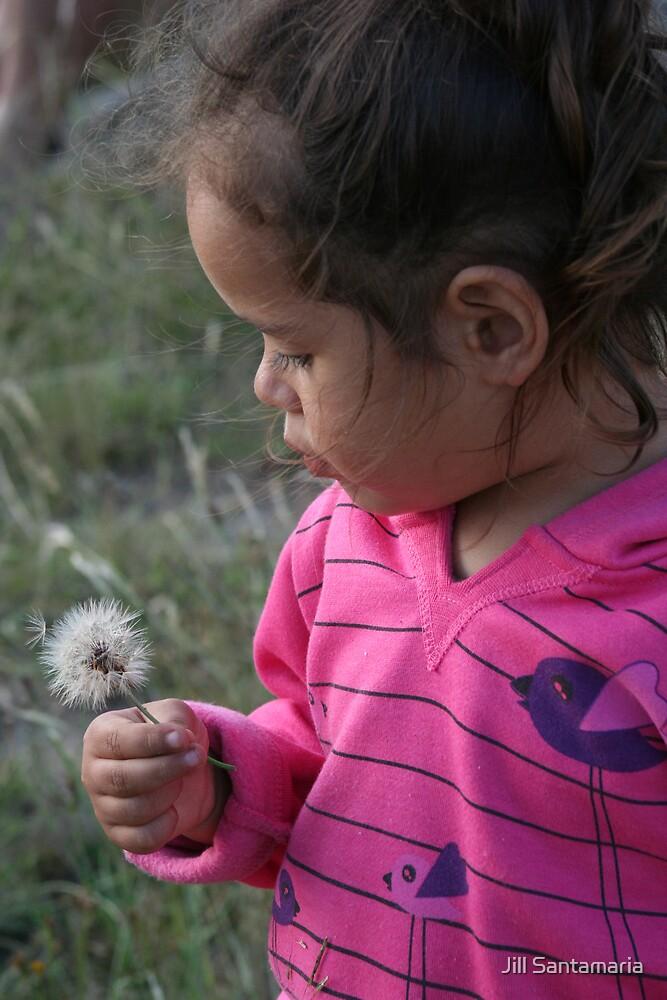 make a wish by Jill Santamaria
