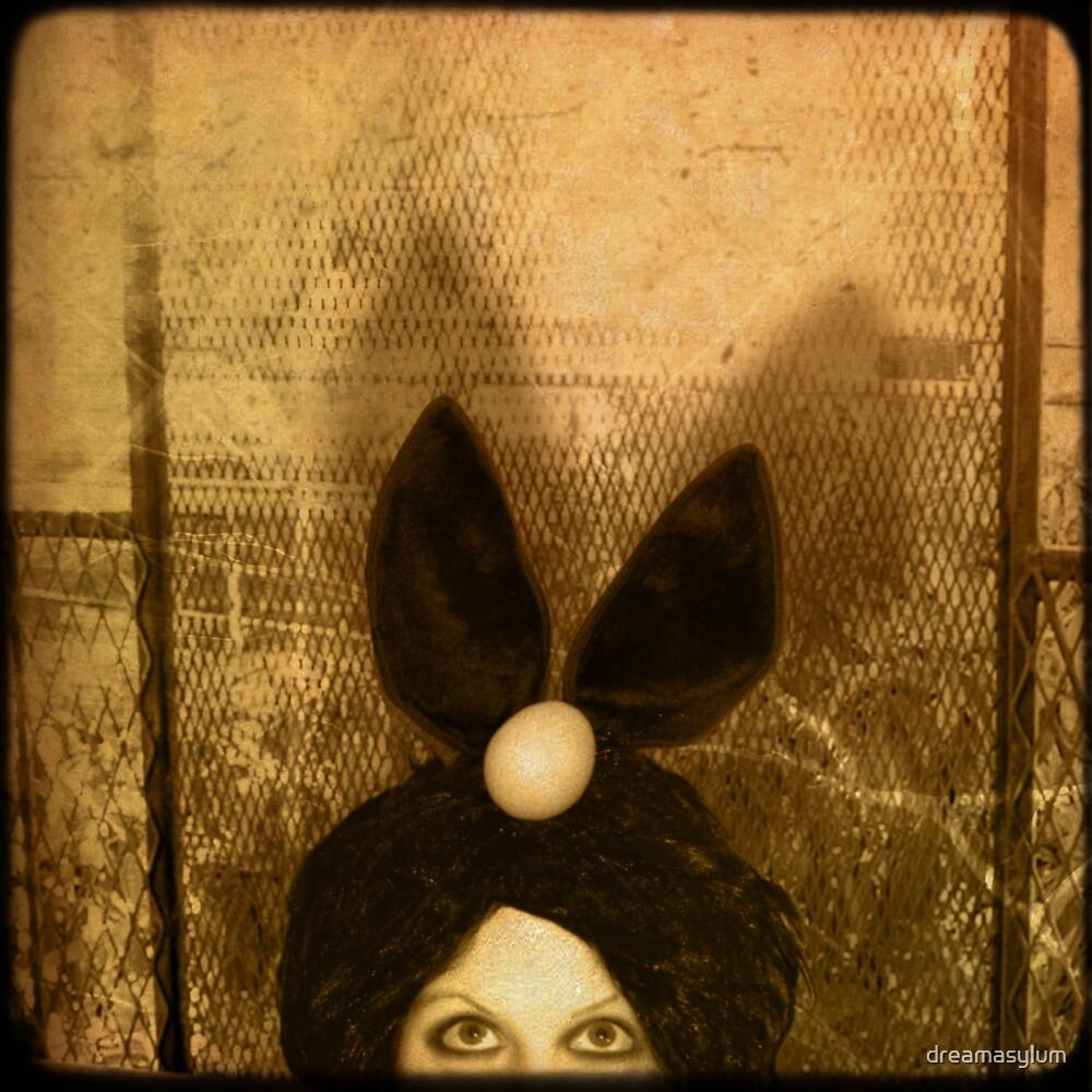 Bunny Nest by dreamasylum