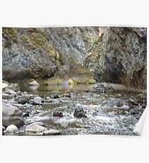 Bear Creek Box Canyon Poster