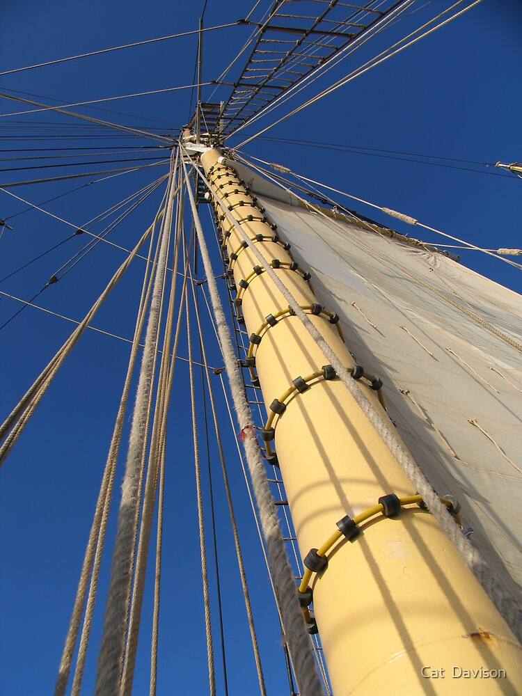 Mast by Cat  Davison