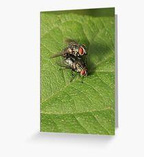Mating Greeting Card