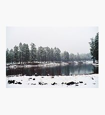 Snowy Tranquility  Photographic Print