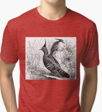 Painted image of a bird Tri-blend T-Shirt
