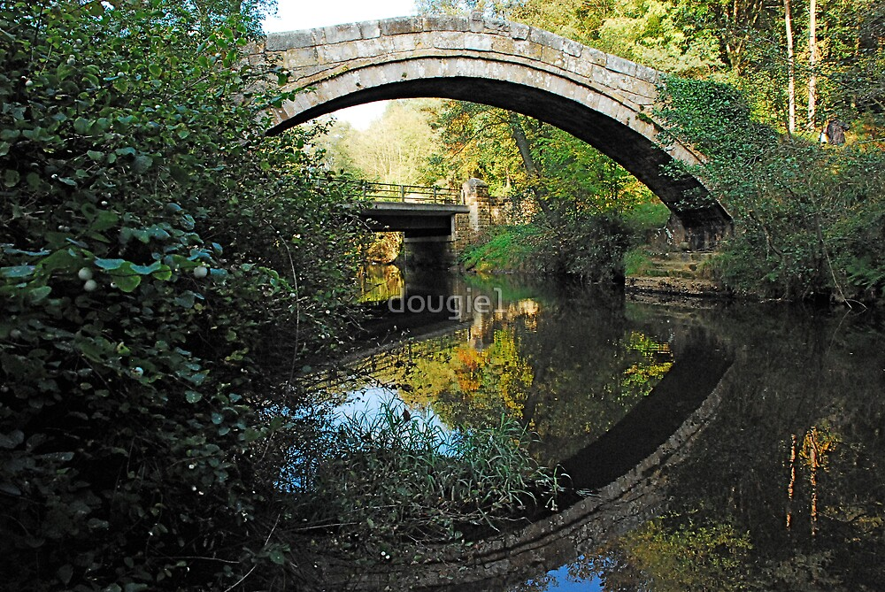 Beggars Bridge  Glaisdale, North Yorkshire Moors again! by dougie1