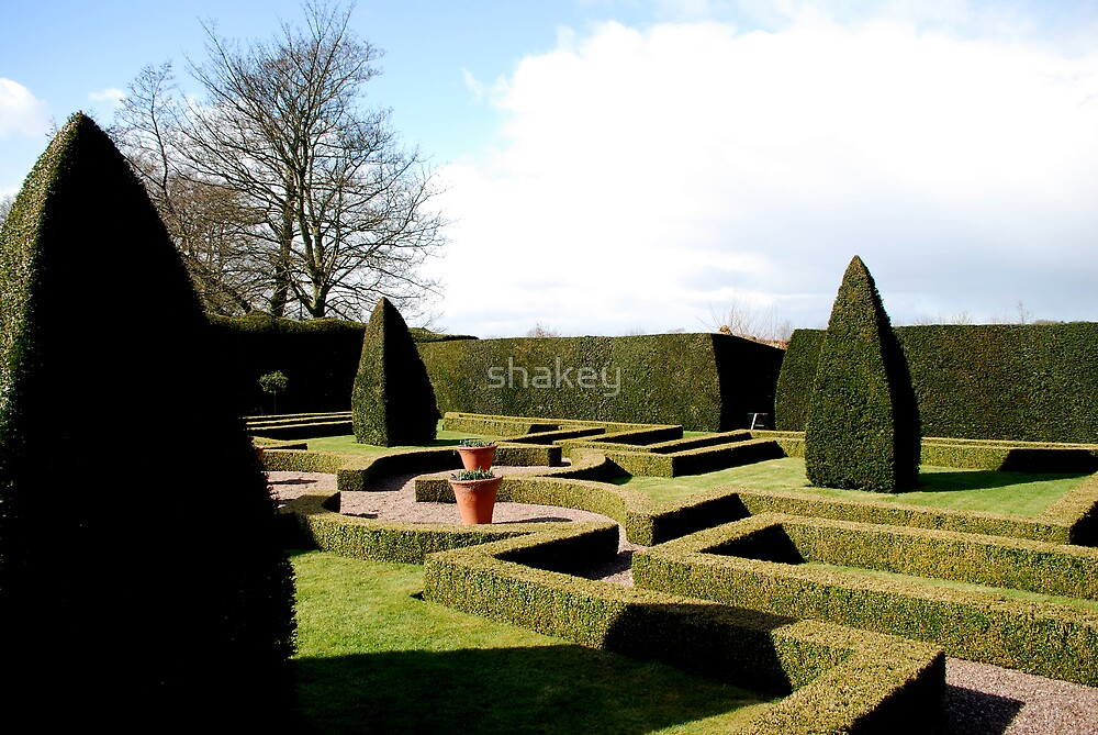 Garden by shakey