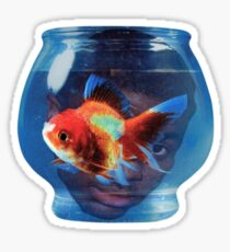 Big fish theory vince staples Sticker