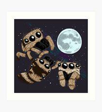 Three Zebra Spider Moon Art Print