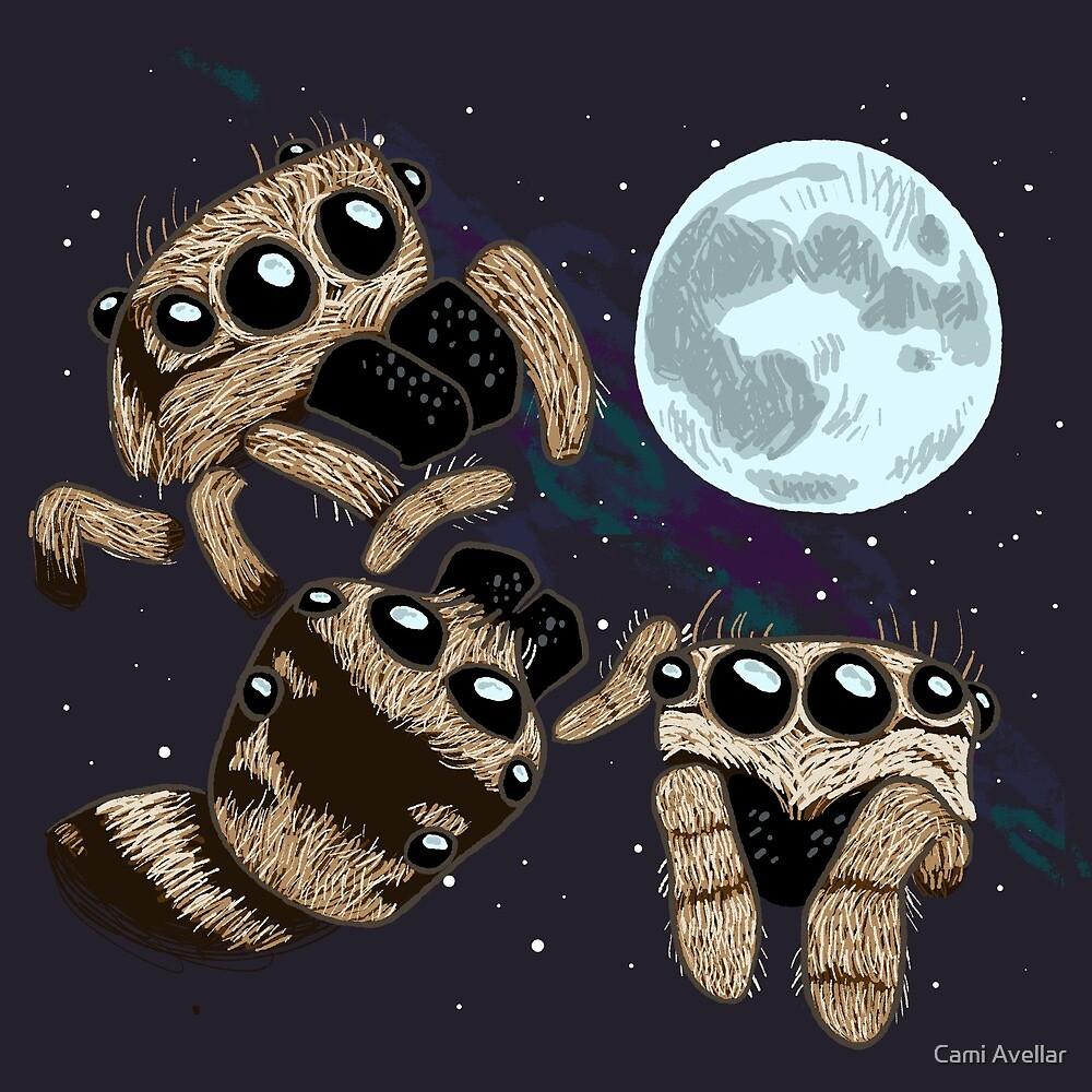 Three Zebra Spider Moon by Cami Avellar