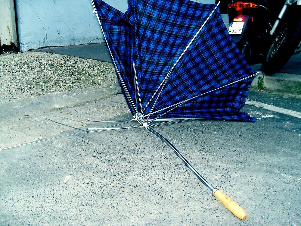 broken umbrella by imogen