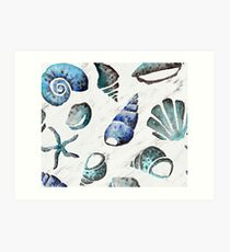 South pacific sea shells - white marble Art Print
