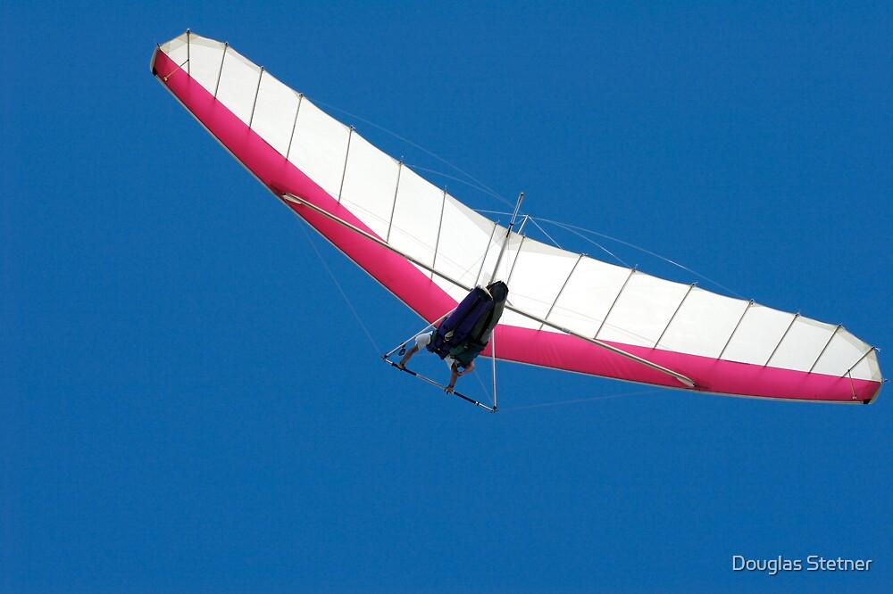 Hang Glider by Douglas Stetner