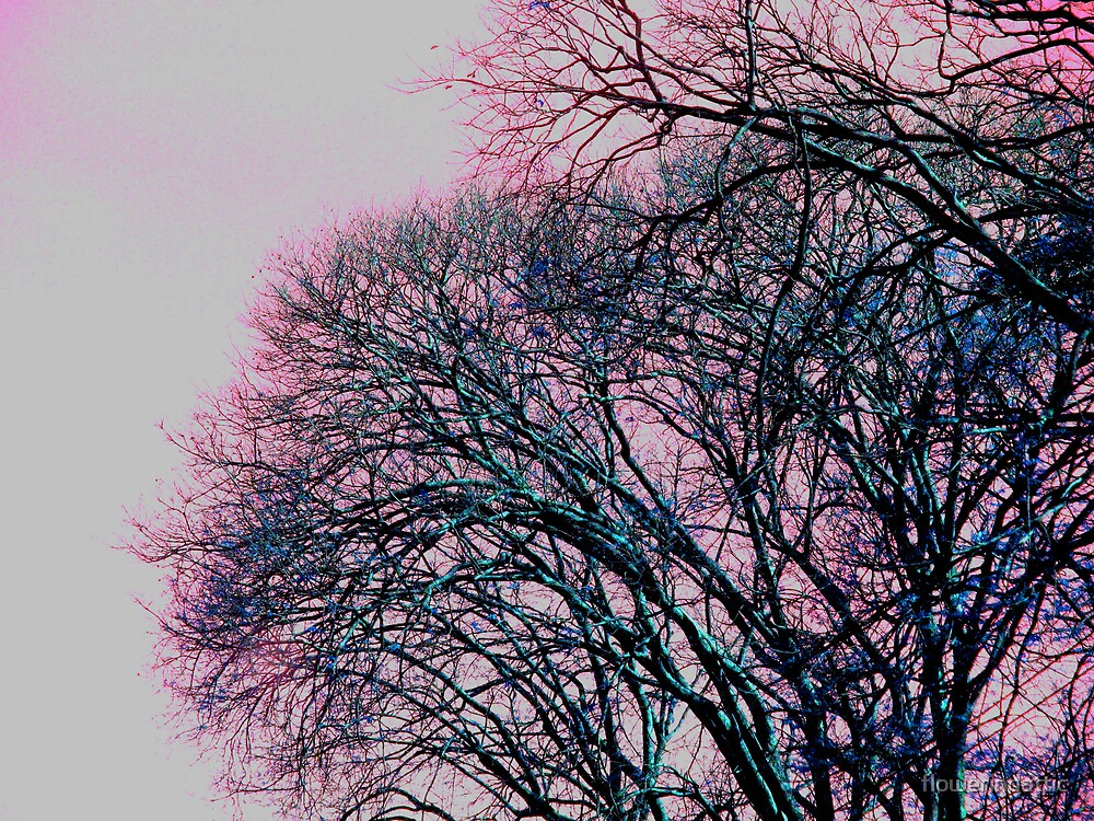 dying tree by flowerindattic