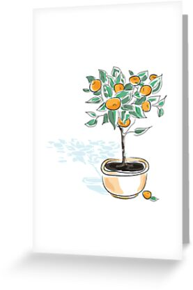 Citrus tree in a pot by oksancia