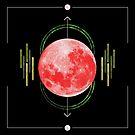 Strawberry Moon by Elyse Boardman