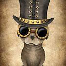 Netter Steampunk Baby-Seelöwe von jeff bartels