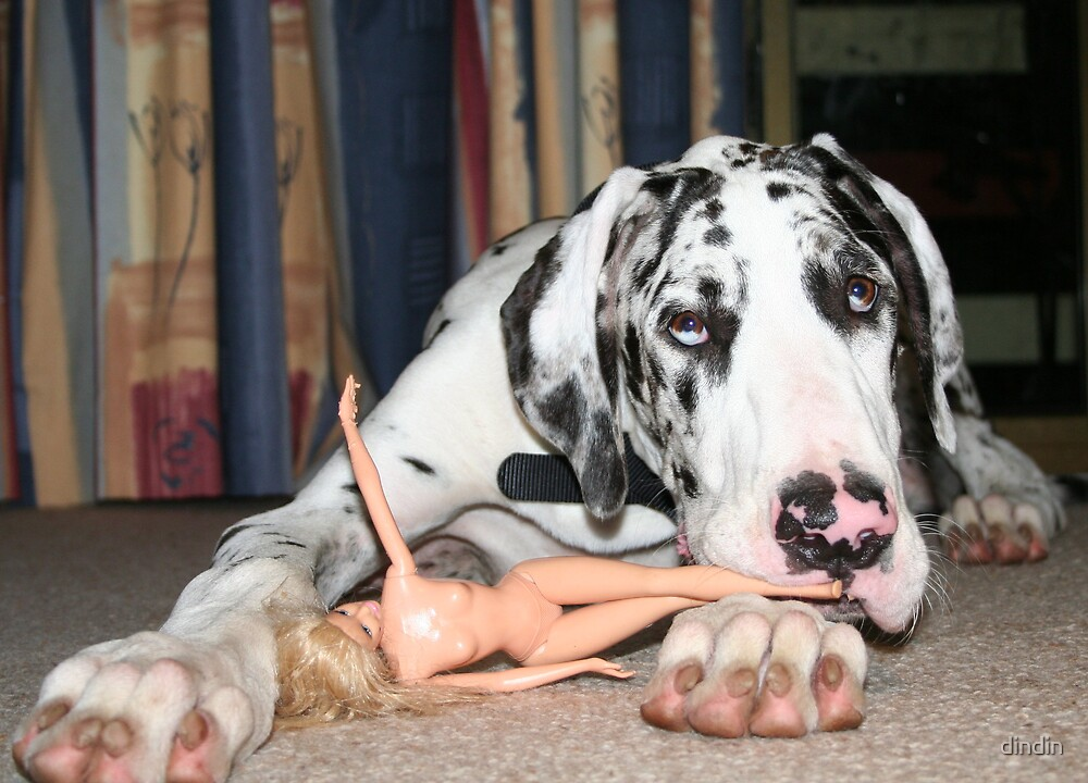 NewsFlash: Great Dane attacks naked woman! by dindin