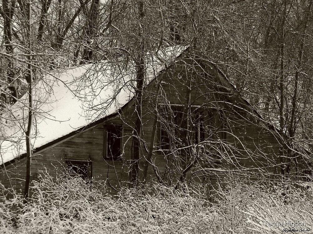 Abandoned by Tanya Higdon