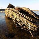 Dock Leavings by RoxxieDrox
