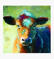 Colourful Calf Painting Photographic Print