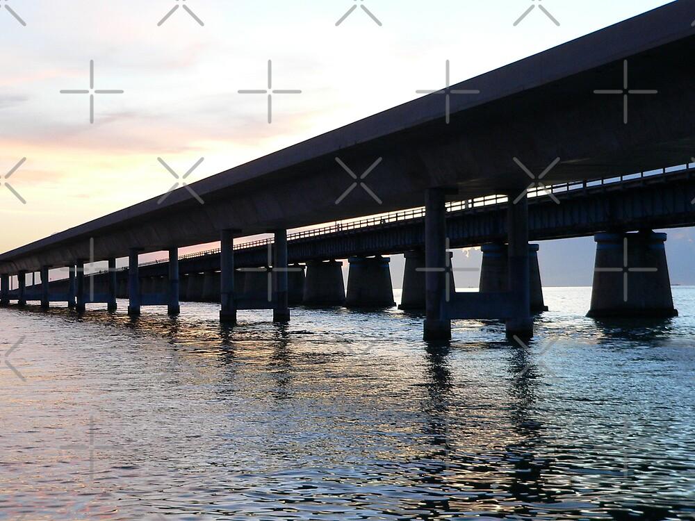 Florida Keys (seven mile bridge) by kevint