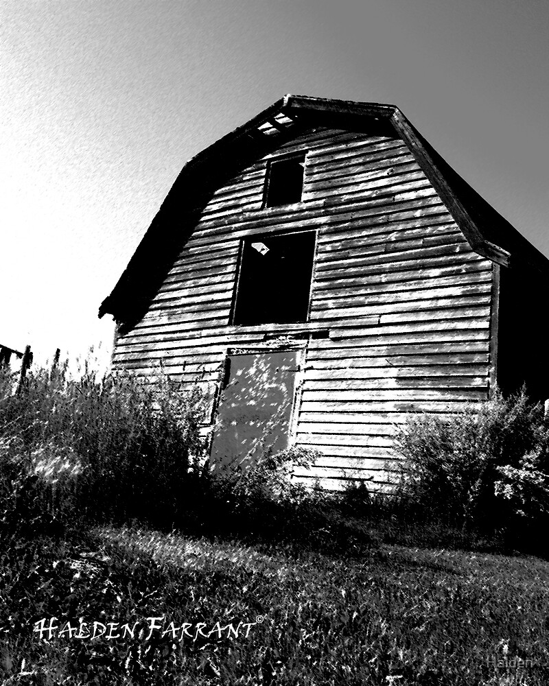 End of The Barn Age by Halden