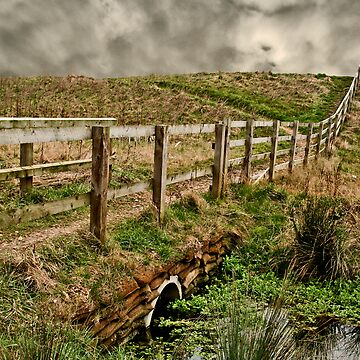 Don't Fence Me In by IanFoss