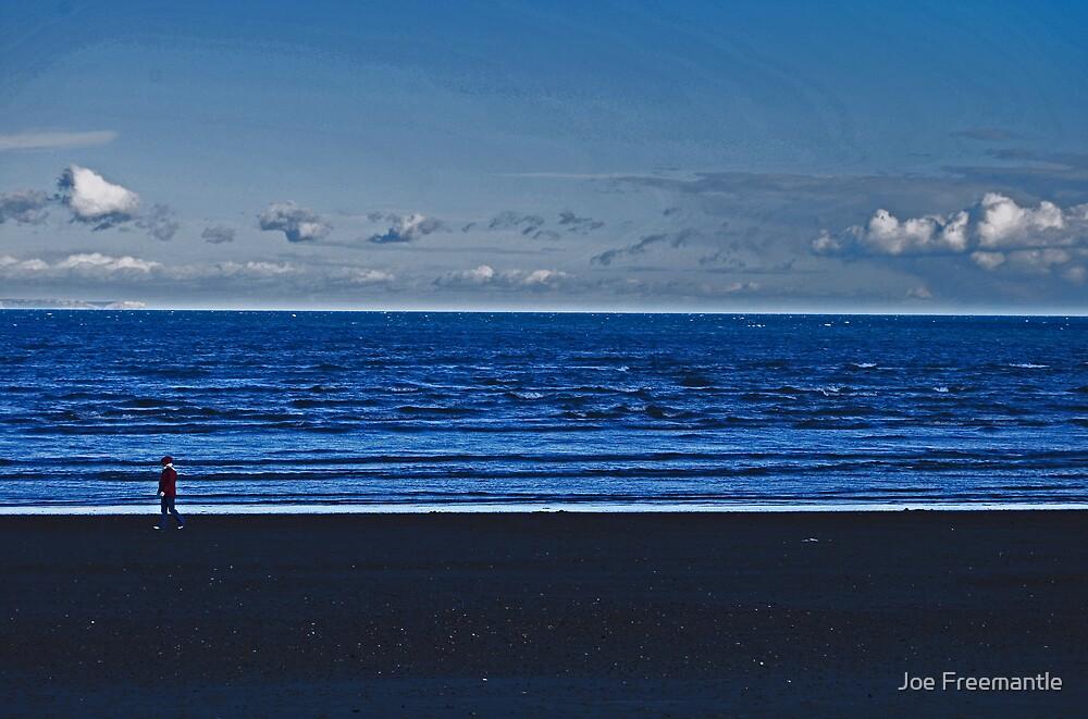 Lonely Walks Along The Beach by Joe Freemantle